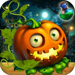 Halloween Witch - Fruits Blast