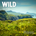 Wild Guide Wales