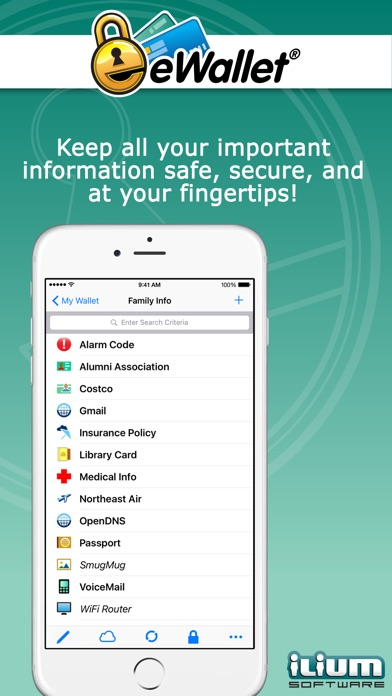 eWallet - Password Manager and Secure Storage Database Wallet Screenshot 1
