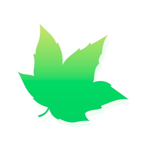 Maple VPN: Unlimited VPN Proxy