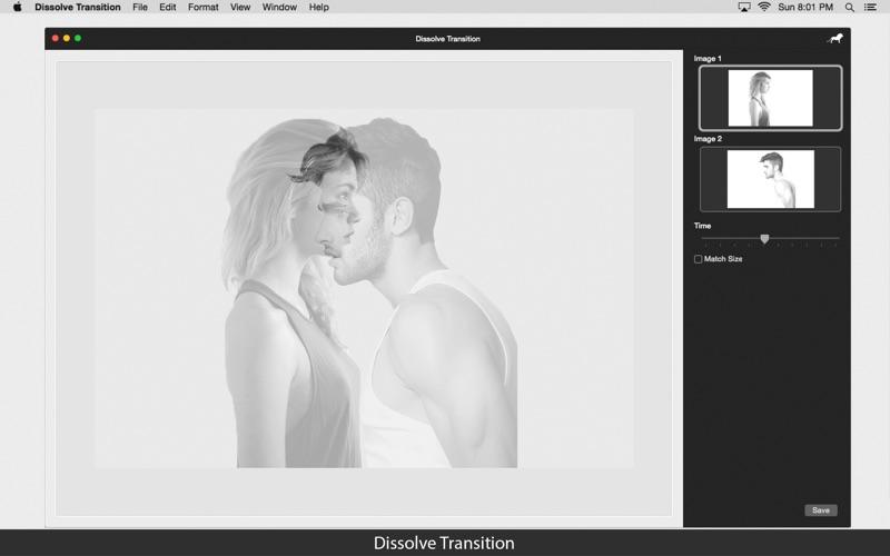 Dissolve Transition: Image blend effect screenshot 2