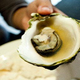 How To Cook Oysters