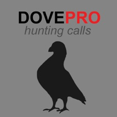 Activities of REAL Dove Sounds and Dove Calls for Bird Hunting!