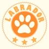 拉布拉多-狗狗训练&喂养App