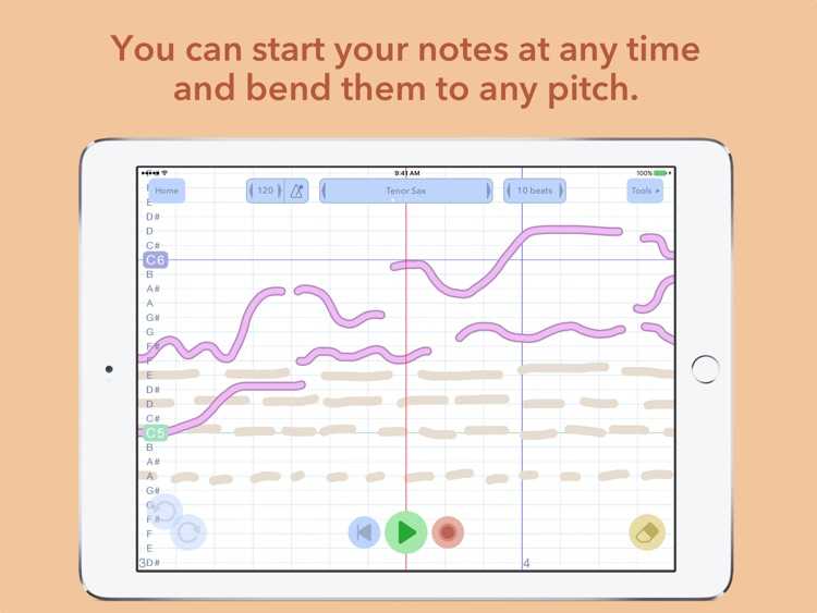 Composer's Sketchpad screenshot-2