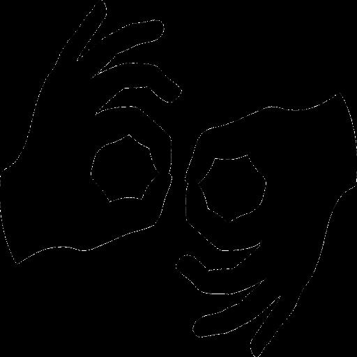 Sign Language Expert