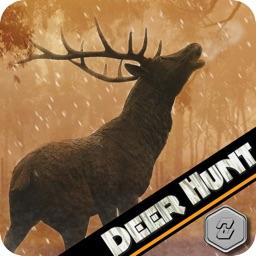 Deer Hunt Big Game 2016 The Hunting Season 3D Hunter Challenge