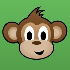 Activities of Monkey Bridge