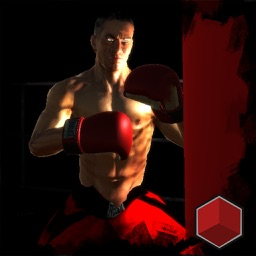 boxing World Championship 3D