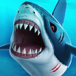 Shark Attack Adventure. Hungry Great White Dash Beach 3D