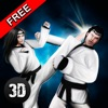 Karate Do Fighting Tiger 3D