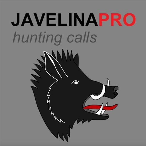 REAL Javelina Calls & Javelina Sounds to use as Hunting Calls