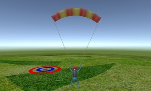 Skydiving Fever