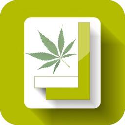 420Square