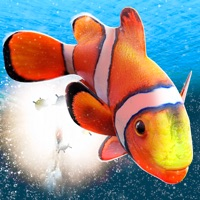 Codes for My Sea Fish Adventure | Free Fish Swimming Game 3D Hack
