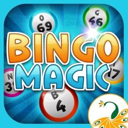 Bingo Magic-Adventure