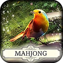 Hidden Mahjong: Garden Paradise