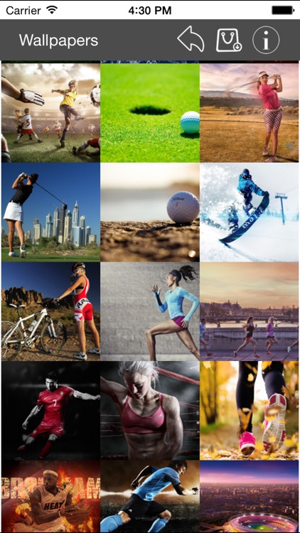 Wallpapers Collection Sport Edition screenshot-3