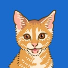Fang die Katze! icon