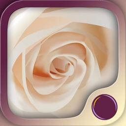 Love Harmony - Hypnosis Meditation