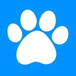 SwiCity – Dog Care Video Channel