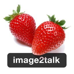 image2talk - functional communication app using real images