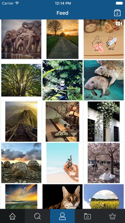 PhoneGrab - Grab, Save & Repost for Instagram Free