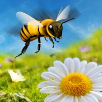 Codes for Honey Bee Attack Flying 3D Simulator Game- Fly to Kill Enemy Insects Hack