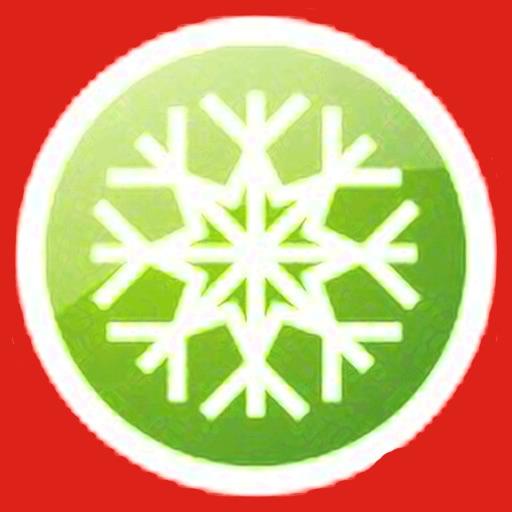 Twelve Days - Christmas icon