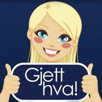 Codes for Gjett hva! - Heads Up på norsk Hack