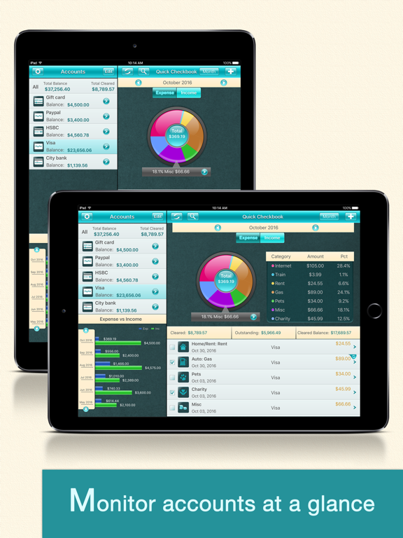 Quick Checkbook Pro for iPad screenshot one