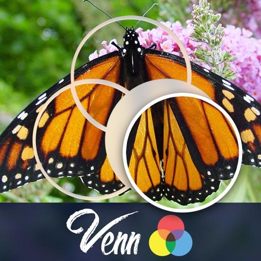 Venn Butterflies: Overlapping Jigsaw Puzzles