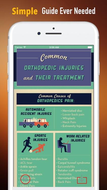 Orthopaedic-Glossary and Tutorial