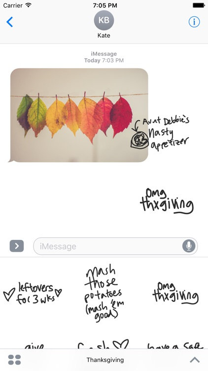 Thanksgiving sticker pack, stickers for iMessage