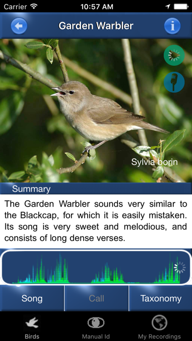 Bird Song Id Automatic Recognition & Reference - Birds of the British Isles screenshot two