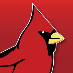 Cardinal Pics