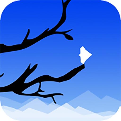 SkyFall: Dove Edition