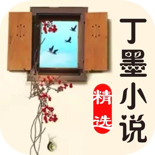 丁墨小说全集:精选都市言情悬爱系列小说