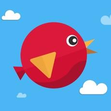 Activities of Drop Bird Drop