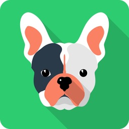 Dog Test: Choose your dog breed