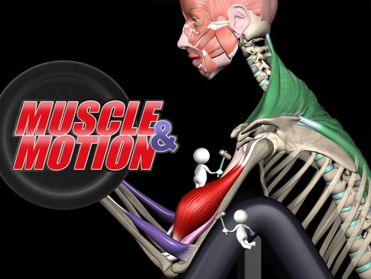 Muscle and Motion Strength Training