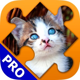 Cats Jigsaw Puzzles. Premium