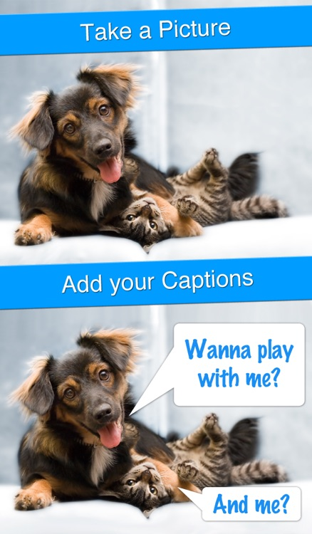 Perfect Captions - Your Life With Subtitles