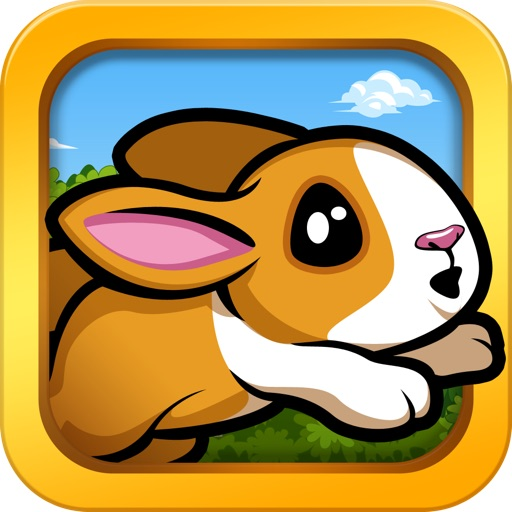 Pet Dash - Racing Animals! icon