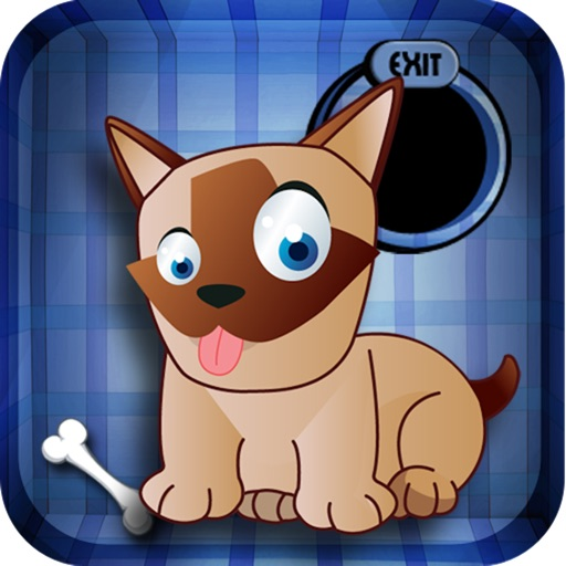 Hungry Dog Lite icon