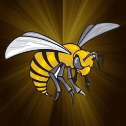 Alabama State Athletics - Go Hornets