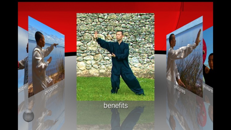 Tai Chi Yang screenshot-2