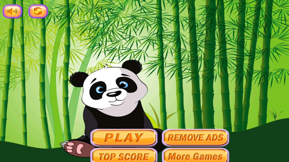 Sky Dash Baby Panda : Bamboo Paradise Jump