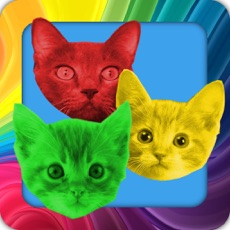 Activities of Cat Swap! Cats and Kittens Gem Puzzle