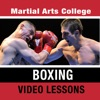 Boxing Lessons - M.A.C. Martial Arts College